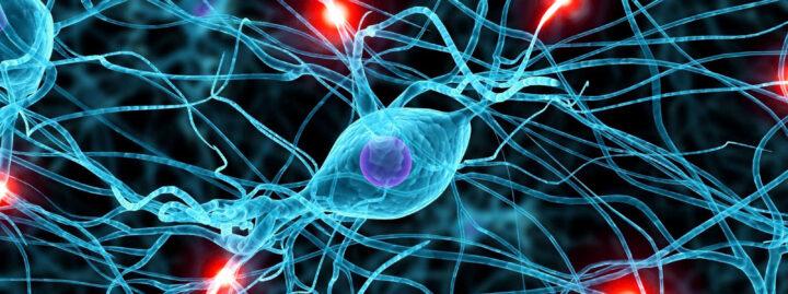 Neurologia e Neurofisiologia Clinica